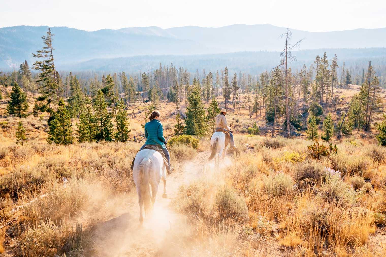 Exploring the Sawtooth Mountains on horseback
